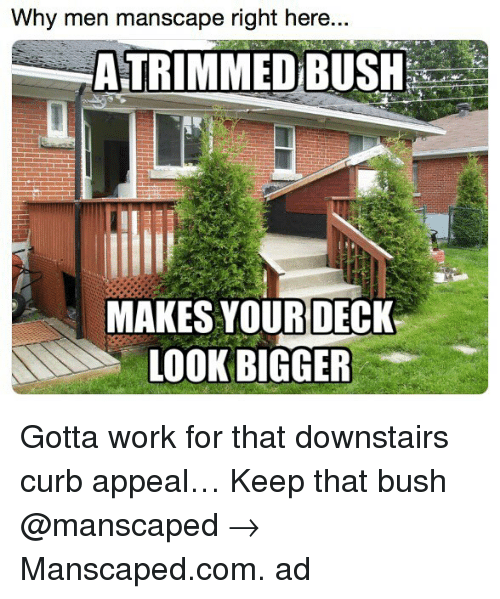 Memes, Work, and 🤖: Why men manscape right here...  ATRIMMED BUSH  MAKES YOUR DECK  LOOKBIGGER Gotta work for that downstairs curb appeal… Keep that bush @manscaped → Manscaped.com. ad