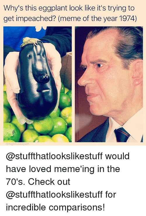 Memeing: Why's this eggplant look like it's trying to  get impeached? (meme of the year 1974)  hig @stuffthatlookslikestuff would have loved meme'ing in the 70's. Check out @stuffthatlookslikestuff for incredible comparisons!