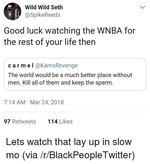 WNBA (Womens National Basketball Association): Wild Wild Seth  aSpikeReeds  Good luck watching the WNBA for  the rest of your life then  carmel @KamsRevenge  The world would be a much better place without  men. Kill all of them and keep the sperm  7:14 AM Mar 24, 2018  97 Retweets  114 Likes <p>Lets watch that lay up in slow mo (via /r/BlackPeopleTwitter)</p>