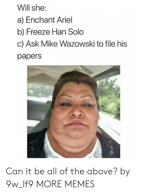 Han Solo: Will she:  a) Enchant Ariel  b) Freeze Han Solo  c) Ask Mike Wazowski to file his  papers Can it be all of the above? by 9w_lf9 MORE MEMES