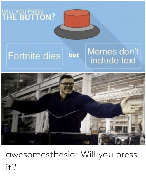 Memes, Tumblr, and Blog: WILL YOU PRESS  THE BUTTON?  but Memes don't  include text  Fortnite dies awesomesthesia:  Will you press it?