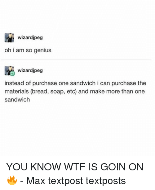 Geniusism: wizardjpeg  oh i am so genius  wizardjpeg  instead of purchase one sandwich i can purchase the  materials (bread, soap, etc) and make more than one  sandwich YOU KNOW WTF IS GOIN ON 🔥 - Max textpost textposts