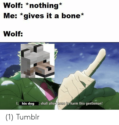 Tumblr, Wolf, and Dog: Wolf: *nothing*  Me: *gives it a bone*  Wolf:  shall allow none to harm this gentleman!  I, his dog (1) Tumblr