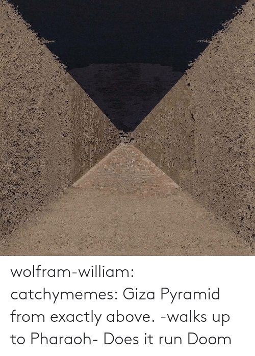 Run, Tumblr, and Blog: wolfram-william: catchymemes: Giza Pyramid from exactly above.    -walks up to Pharaoh- Does it run Doom