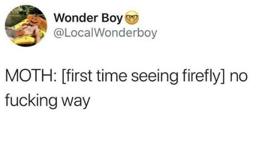 Fucking, Firefly, and Time: Wonder Boy  @LocalWonderboy  MOTH: [first time seeing firefly] no  fucking way