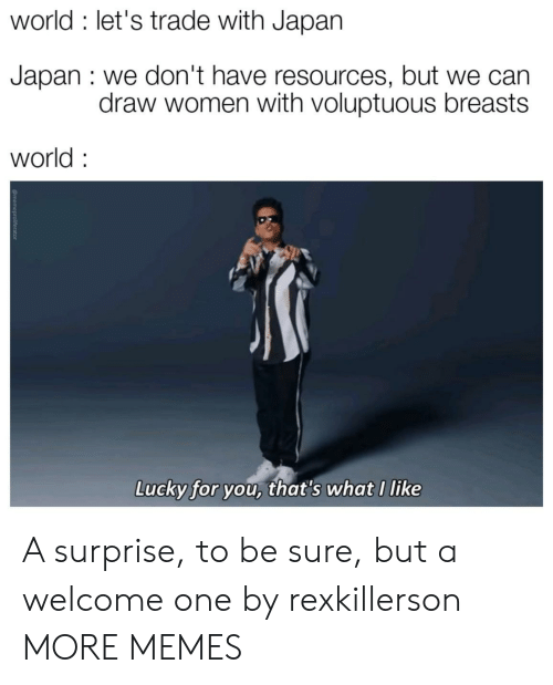 Dank, Memes, and Target: world : let's trade with Japan  Japan : we don't have resources, but we can  draw women with voluptuous breasts  world  Lucky for you, that's what I like A surprise, to be sure, but a welcome one by rexkillerson MORE MEMES