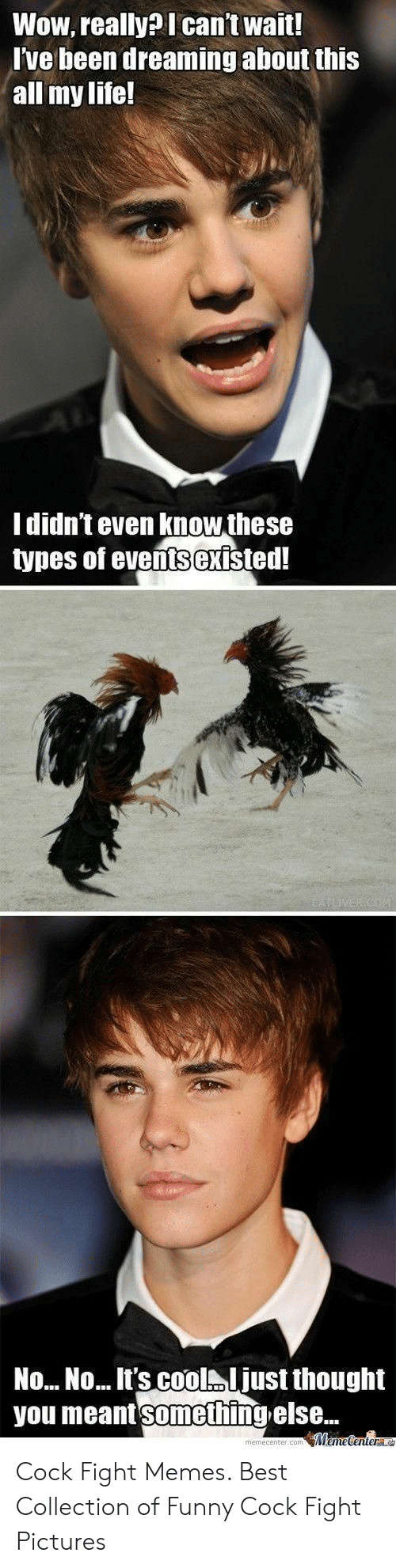 Funny Cock Pics 🐣 25+ best memes about funny cock | funny cock memes