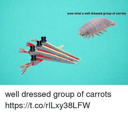 Wow, Group, and What: wow what a well dressed group of carrots well dressed group of carrots https://t.co/rILxy38LFW