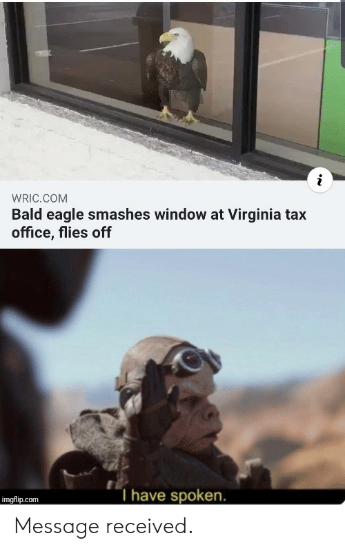 Eagle, Office, and Virginia: WRIC.COM  Bald eagle smashes window at Virginia tax  office, flies off  T have spoken.  imgflip.com Message received.