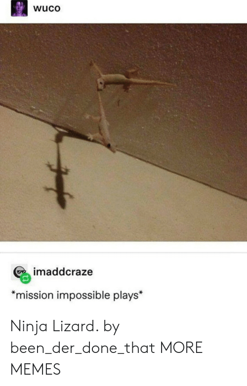 """Ninja: wuco  imaddcraze  *mission impossible plays"""" Ninja Lizard. by been_der_done_that MORE MEMES"""