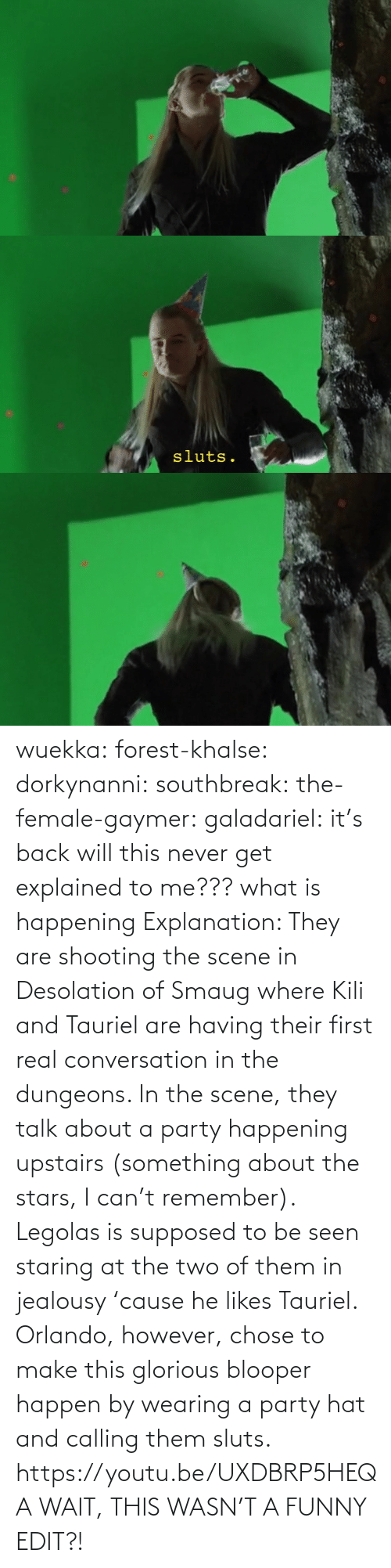 Funny: wuekka: forest-khalse:   dorkynanni:  southbreak:   the-female-gaymer:   galadariel:  it's back   will this never get explained to me???    what is happening    Explanation:  They are shooting the scene in Desolation of Smaug where Kili and Tauriel are having their first real conversation in the dungeons.  In the scene, they talk about a party happening upstairs (something about the stars, I can't remember). Legolas is supposed to be seen staring at the two of them in jealousy 'cause he likes Tauriel.  Orlando, however, chose to make this glorious blooper happen by wearing a party hat and calling them sluts.    https://youtu.be/UXDBRP5HEQA    WAIT, THIS WASN'T A FUNNY EDIT?!