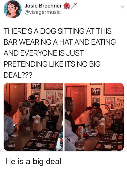 Alcohol, Dog, and Big: /x  Josie Brechner  @visagermusic  THERE'S A DOG SITTING AT THIS  BAR WEARING A HAT AND EATING  AND EVERYONE IS JUST  PRETENDING LIKE ITS NO BIG  DEAL???  Fries or Tots  ALCOHOL  Hot  Hot  HOT He is a big deal