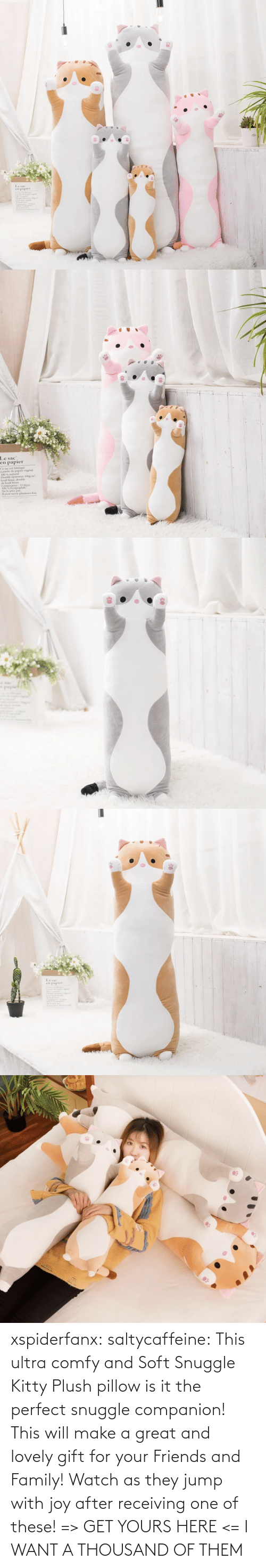 lovely: xspiderfanx:  saltycaffeine: This ultra comfy and Soft Snuggle Kitty Plush pillow is it the perfect snuggle companion! This will make a great and lovely gift for your Friends and Family! Watch as they jump with joy after receiving one of these! => GET YOURS HERE <=    I WANT A THOUSAND OF THEM