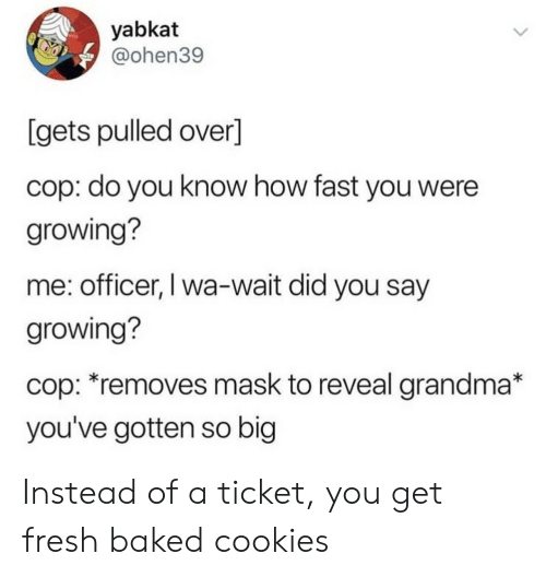 Baked, Cookies, and Fresh: yabkat  @ohen39  [gets pulled over]  cop: do you know how fast you were  growing?  me: officer, I wa-wait did you say  growing?  cop: *removes mask to reveal grandma*  you've gotten so big Instead of a ticket, you get fresh baked cookies
