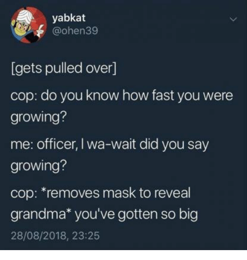 Grandma, Mask, and How: yabkat  @ohen39  [gets pulled over]  cop: do you know how fast you were  growing?  me: officer, I wa-wait did you say  growing?  cop: *removes mask to reveal  grandma* you've gotten so big  28/08/2018, 23:25