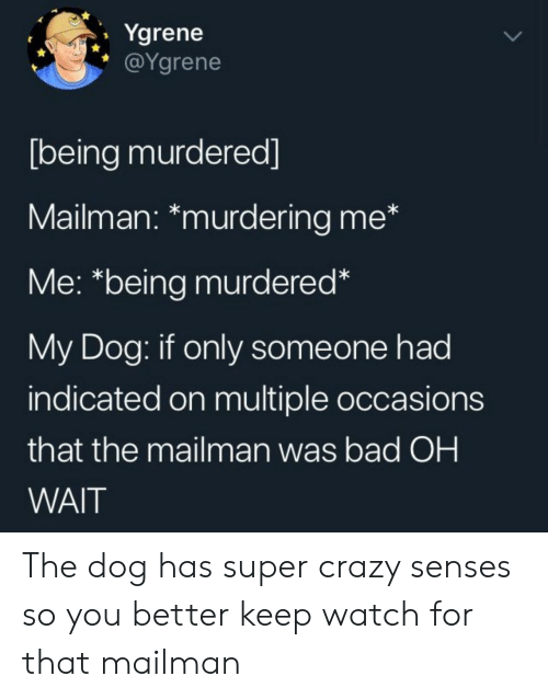 senses: Ygrene  @Ygrene  [being murdered]  Mailman: *murdering me*  Me: *being murdered*  My Dog: if only someone had  indicated on multiple occasions  that the mailman was bad OH  WAIT The dog has super crazy senses so you better keep watch for that mailman
