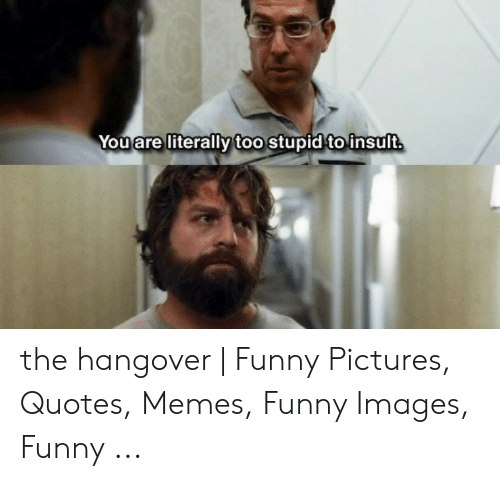 🐣 25+ Best Memes About Hungover Memes   Hungover Memes
