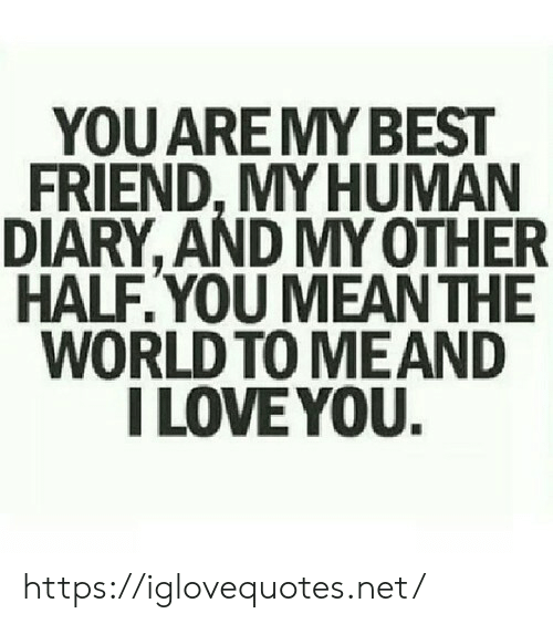 I Love You: YOU ARE MY BEST  FRIEND,MY HUMAN  DIARY, AND MY OTHER  HALF.YOU MEAN THE  WORLD TO MEAND  I LOVE YOU. https://iglovequotes.net/