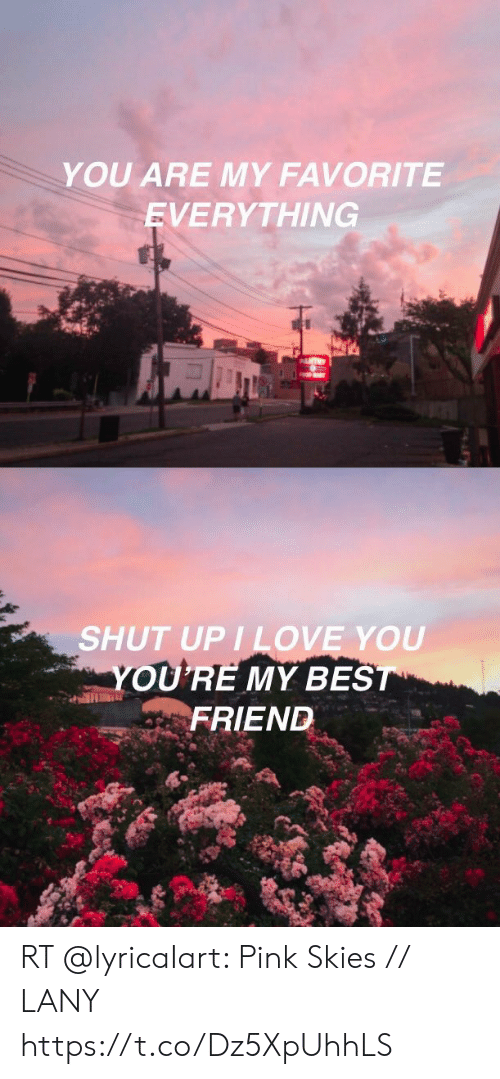 Love, Memes, and Shut Up: YOU ARE MY FAVORITE  EVERYTHING   SHUT UP I LOVE YOU  OURE MY BES  FRIEND RT @lyricaIart: Pink Skies // LANY https://t.co/Dz5XpUhhLS