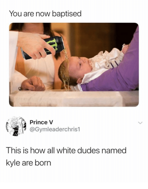 all white: You are now baptised  Prince V  @Gymleaderchris1  This is how all white dudes named  kyle are born