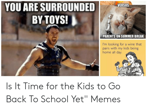YOU ARE SURROUNDED I BY TOYS! VERSUS PARENTS ON SUMMER BREAK