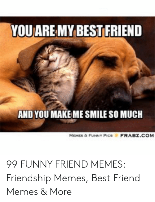 Best Friend, Funny, and Memes: YOU AREMY BEST FRIEND  AND YOU MAKE ME SMILE SO MUCH  MEMES D&FUNNY PICSFRABZ.COM 99 FUNNY FRIEND MEMES: Friendship Memes, Best Friend Memes & More