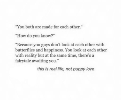 """Life, Love, and Puppy: """"You both are made for each other.""""  """"How do you know?""""  """"Because you guys don't look at each other with  butterflies and happiness. You look at each other  with reality but at the same time, there's a  fairytale awaiting you.  this is real life, not puppy love"""