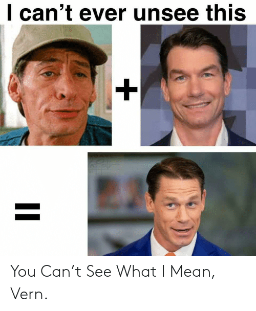 what: You Can't See What I Mean, Vern.
