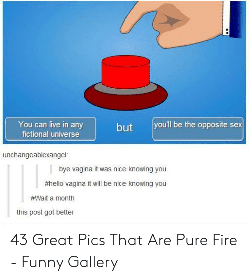 Fire, Funny, and Hello: You can live in any  fictional universe  but you'll be the opposite sex  bye vagina it was nice knowing you  #hello vagina it will be nice knowing you  #Wait a month  this post got better 43 Great Pics That Are Pure Fire - Funny Gallery