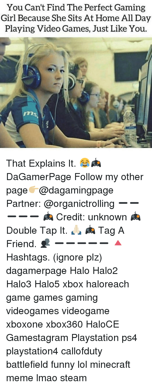 Minecraft Meme: You Can't Find The Perfect Gaming  Girl Because She Sits At Home All Day  Playing Video Games, Just Like You. That Explains It. 😂🎮 DaGamerPage Follow my other page👉🏼@dagamingpage Partner: @organictrolling ➖➖➖➖➖ 🎮 Credit: unknown 🎮 Double Tap It. 🙏🏻 🎮 Tag A Friend. 👥 ➖➖➖➖➖ 🔺Hashtags. (ignore plz) dagamerpage Halo Halo2 Halo3 Halo5 xbox haloreach game games gaming videogames videogame xboxone xbox360 HaloCE Gamestagram Playstation ps4 playstation4 callofduty battlefield funny lol minecraft meme lmao steam