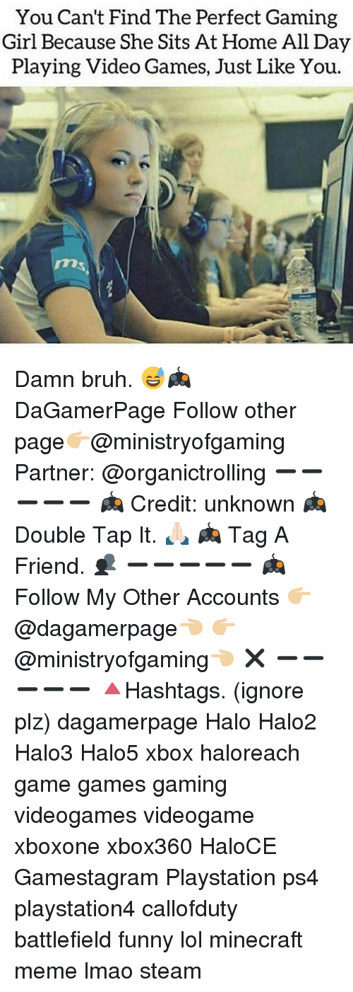 Minecraft Meme: You Can't Find The Perfect Gaming  Girl Because She Sits At Home All Day  Playing Video Games, Just Like You. Damn bruh. 😅🎮 DaGamerPage Follow other page👉🏼@ministryofgaming Partner: @organictrolling ➖➖➖➖➖ 🎮 Credit: unknown 🎮 Double Tap It. 🙏🏻 🎮 Tag A Friend. 👥 ➖➖➖➖➖ 🎮 Follow My Other Accounts 👉🏼@dagamerpage👈🏼 👉🏼@ministryofgaming👈🏼 ✖️ ➖➖➖➖➖ 🔺Hashtags. (ignore plz) dagamerpage Halo Halo2 Halo3 Halo5 xbox haloreach game games gaming videogames videogame xboxone xbox360 HaloCE Gamestagram Playstation ps4 playstation4 callofduty battlefield funny lol minecraft meme lmao steam
