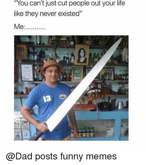 """Posts Funny: """"You can't just cut people out your life  like they never existed""""  13 @Dad posts funny memes"""