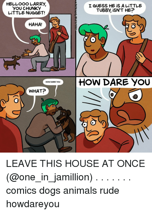 Animals, Dogs, and Memes: YOU CHUNKY  LITTLE NUGGET!  I GUESS HE iS A LITTLE  TUBBY, İSN'T HE?  HAHA!T    HOW DARE YOU  HOW DARE YOU  WHAT? LEAVE THIS HOUSE AT ONCE (@one_in_jamillion) . . . . . . . comics dogs animals rude howdareyou