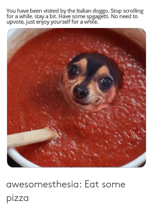 Pizza, Tumblr, and Blog: You have been visited by the Italian doggo. Stop scrolling  for a while. stay a bit. Have some spgagetti. No need to  upvote, just enjoy yourself for a while. awesomesthesia:  Eat some pizza