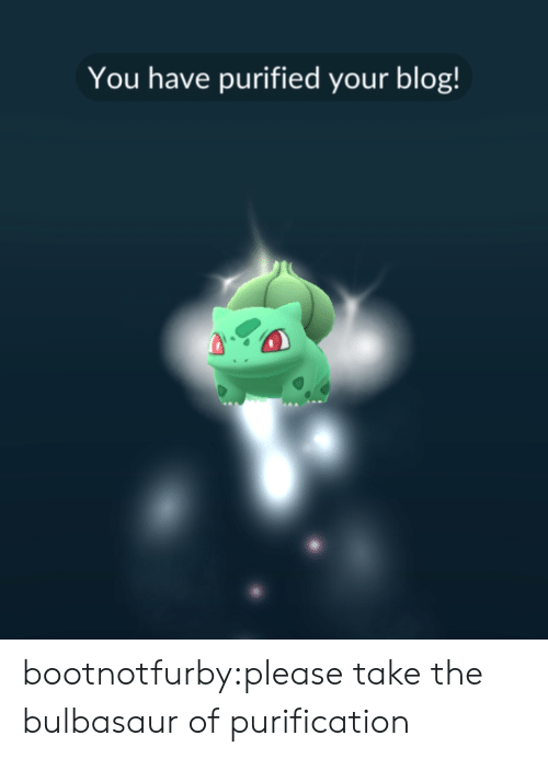 Bulbasaur, Tumblr, and Blog: You have purified your blog! bootnotfurby:please take the bulbasaur of purification