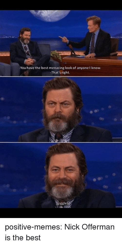 Memes, Nick Offerman, and Tumblr: You have the best menacing look of anyone I know.  That's right.  iggle positive-memes:  Nick Offerman is the best