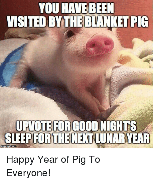 Happy, Sleep, and Pig: YOU HAVEBEEN  VISITED BYTHE BLANKET PIG  UPVOTE FORGOOD NIGHTS  SLEEP NEXI LUNARYEAR  FORTHE Happy Year of Pig To Everyone!