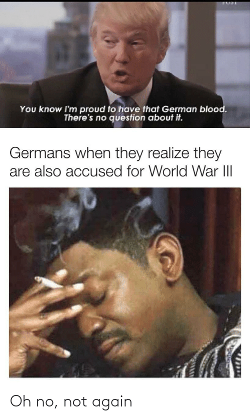 question: You know I'm proud to have that German blood.  There's no question about it.  Germans when they realize they  are also accused for World War III  1714 Oh no, not again