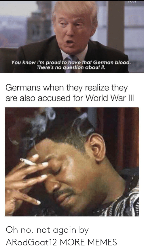 question: You know I'm proud to have that German blood.  There's no question about it.  Germans when they realize they  are also accused for World War III  1714 Oh no, not again by ARodGoat12 MORE MEMES