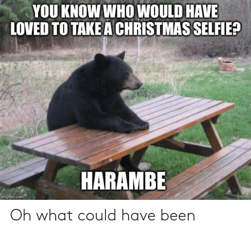 imgflip: YOU KNOW WHO WOULD HAVE  LOVED TO TAKE A CHRISTMAS SELFIE?  HARAMBE  imgflip.com Oh what could have been