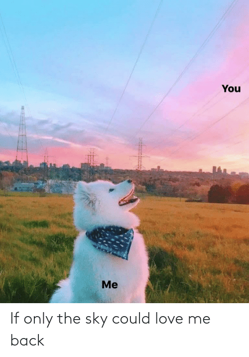 love me: You  Me If only the sky could love me back