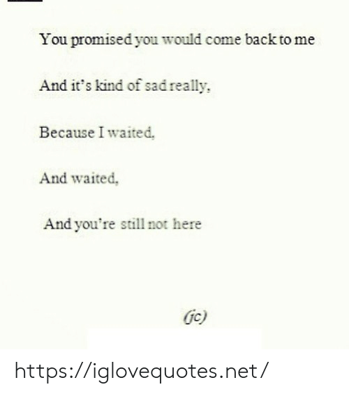 Back, Net, and You: You promised you would come back to me  And it's kind of sadreally  Because I waited,  And waited,  And you're still not here  Gc) https://iglovequotes.net/
