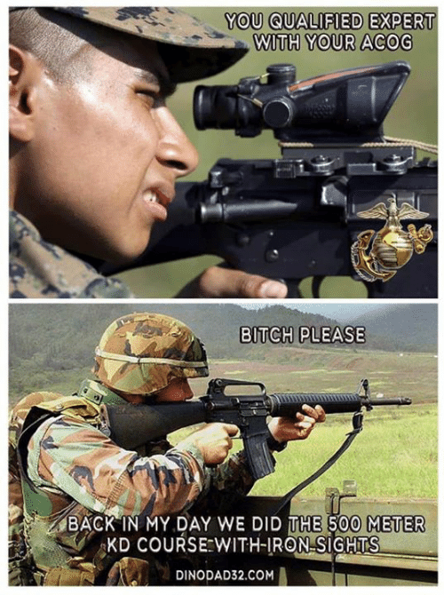 Bitch, Memes, and Bitch Please: YOU QUALIFIED  EXPERT  WITH YOUR ACOG  BITCH PLEASE  BACK IN MY DAY WE DID THE 500 METER  KD COURSE WITH-IRON SIGHTS  DINODAD32.COM