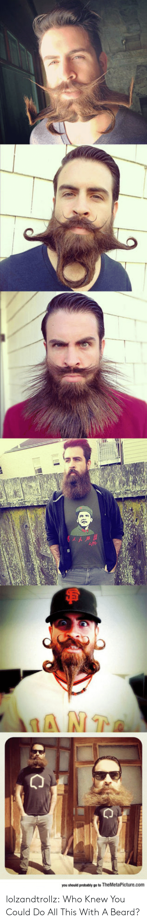 A Beard: you should probably go to TheMetaPicture.com lolzandtrollz:  Who Knew You Could Do All This With A Beard?