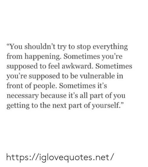 """Awkward, Net, and Next: """"You shouldn't try to stop everything  from happening. Sometimes you're  supposed to feel awkward. Sometimes  you're supposed to be vulnerable in  front of people. Sometimes it's  necessary because it's all part of you  getting to the next part of yourself."""" https://iglovequotes.net/"""
