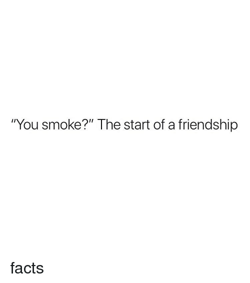 """Facts, Weed, and Marijuana: """"You smoke?"""" The start of a friendship facts"""