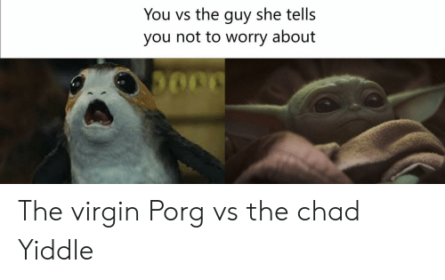 Virgin, Chad, and She: You vs the guy she tells  you not to worry about The virgin Porg vs the chad Yiddle
