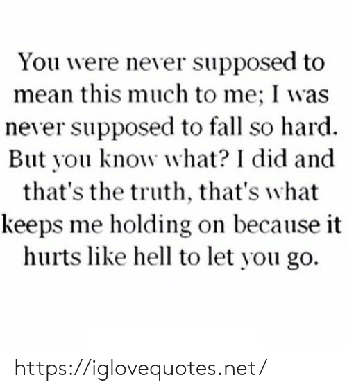 This Much: You were never supposed to  mean this much to me; I was  never supposed to fall so hard  But you know what? I did and  that's the truth, that's what  keeps me holding on because it  hurts like hell to let you go https://iglovequotes.net/
