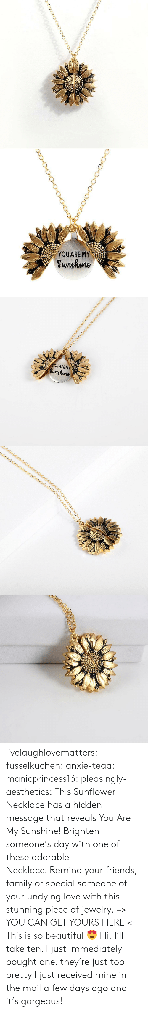 Beautiful, Family, and Friends: YOUARE MY  Sunhuno   YOUARE MY  Sunghune livelaughlovematters:  fusselkuchen: anxie-teaa:   manicprincess13:   pleasingly-aesthetics:  This Sunflower Necklace has a hidden message that reveals You Are My Sunshine! Brighten someone's day with one of these adorable Necklace!Remind your friends, family or special someone of your undying love with this stunning piece of jewelry. => YOU CAN GET YOURS HERE <=   This is so beautiful 😍    Hi, I'll take ten.    I just immediately bought one. they're just too pretty   I just received mine in the mail a few days ago and it's gorgeous!