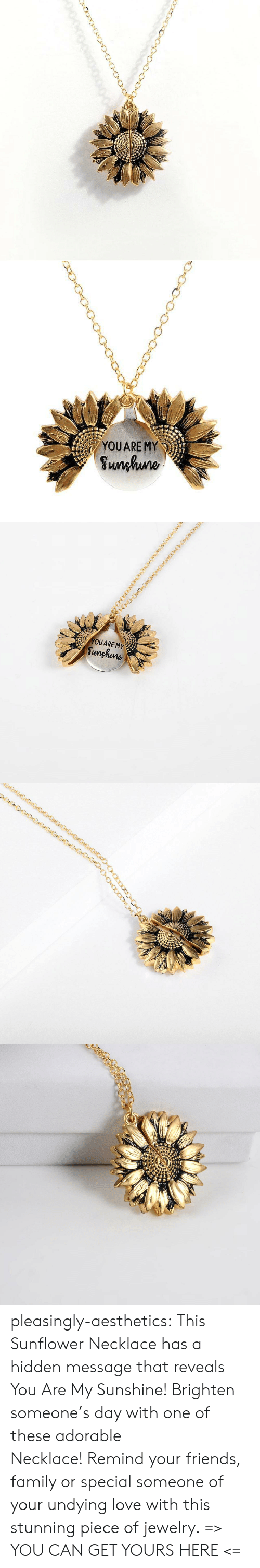 My Sunshine: YOUARE MY  Sunhuno   YOUARE MY  Sunghune pleasingly-aesthetics: This Sunflower Necklace has a hidden message that reveals You Are My Sunshine! Brighten someone's day with one of these adorable Necklace!Remind your friends, family or special someone of your undying love with this stunning piece of jewelry. => YOU CAN GET YOURS HERE <=
